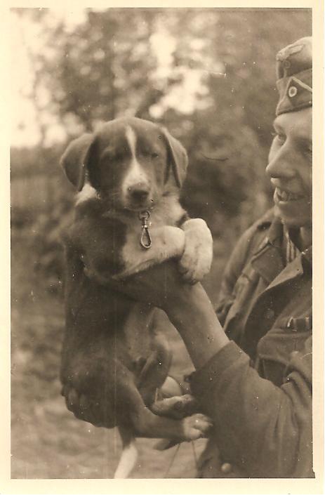 k9-pup